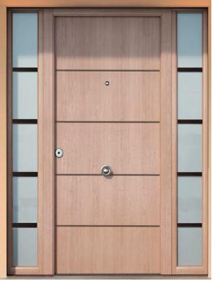 Imagen THT Puerta de seguridad Sagacor 100